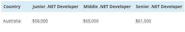 .NET salary